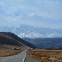 Прогулка в горах. :: Валерий Медведев