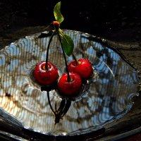 Купание красной вишни. :: ЛЮБОВЬ ВИТТ