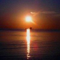 Золотая тропка :: Самохвалова Зинаида