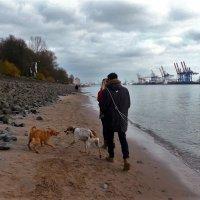 Пляжные разборки :: Nina Yudicheva
