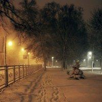 Поздний вечер второго дня весны в Петербурге :: Ирина Румянцева