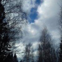 облака весны :: Владимир