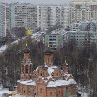 А из нашего окна... :: Ирина Шарапова
