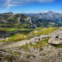 лето в горах :: Elena Wymann