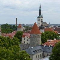 Панорама Таллина :: Елена Суханова