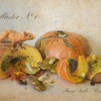 Ботанический альбом :: Юлия Назаренко