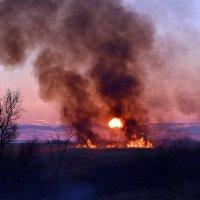 Пожар заката :: Ольга Голубева