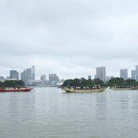 Токийский залив вид на Токио :: Swetlana V
