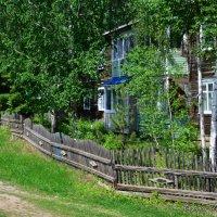 Весь покрытый зеленью... :: Сергей Шаврин