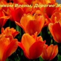 С 8 Марта ! :: Александр Прокудин