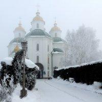 Зима в провинции :: Роман Савоцкий
