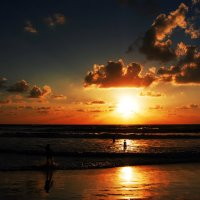 На закате дня ..... :: Aleks Ashkenazi