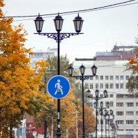 Осень :: Виктор Печищев