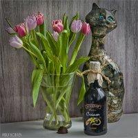 Мартовские тюльпаны :: Василий Бобылёв