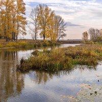 Осенью мелеют реки :: Любовь Потеряхина