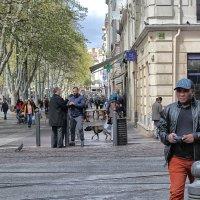На улицах Марселя (3) :: Nina Karyuk