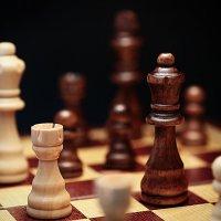 Шахматы :: Наталья Филипсен