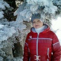 Зимушка-зима) :: Алексей Кузнецов