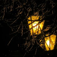 Ночные спутники - фонари :: Светлана Петошина