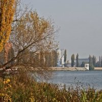 Осенняя перспектива :: Ольга Винницкая (Olenka)