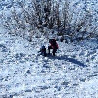 Зима отступает. :: Ильсияр Шакирова