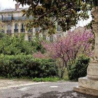 Апрель в Марселе :: Nina Karyuk