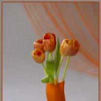Оранжевое настроение :: Светлана Карнаух