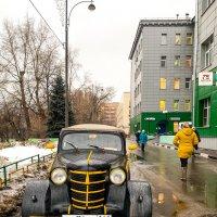 Цвет настроения - Жёлтый! :: Константин Поляков
