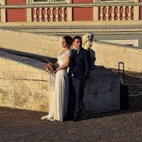 Свадьба :: dindin