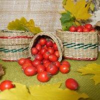 Осенний натюрморт с ягодами боярышника и плетеными шкатулками :: Светлана Захаренкова