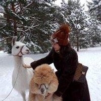 Ищите счастье в мелочах, в радостных мгновениях... :: Ольга Русанова (olg-rusanowa2010)