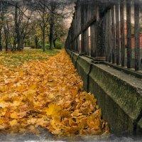 Осенний ковер в Екатерининском парке.. :: Григорий Евдокимов