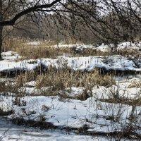 Еще в полях белеет снег... :: олег свирский
