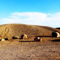 Интересно, откуда камни :: Raduzka (Надежда Веркина)