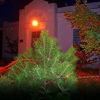 Ночь, улица, фонарь, аптека..... :: Ольга (crim41evp)