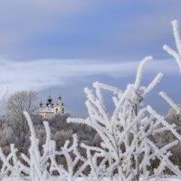 Зима в Подмосковье :: Светлана Карнаух