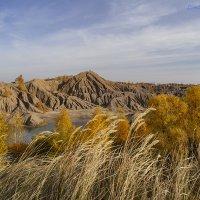 Осень,  Воронцевские горы :: Светлана Карнаух