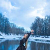 черный лебедь :: Екатерина