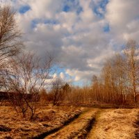 картинки весны 2 :: Александр Прокудин