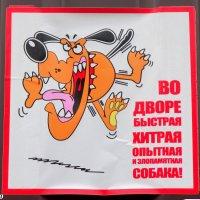 Песнь о ростовской собаке :: Нина Бутко