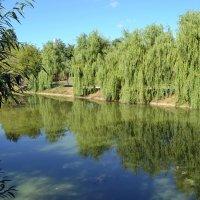 Лето в Хамовниках :: Ольга