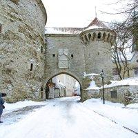 Большие морские ворота и башня Толстая Маргарита :: Андрей K.