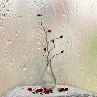 Время дождей :: Наталья (D.Nat@lia)