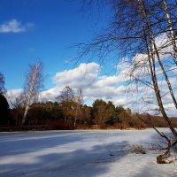 Небо марта приобрело цвет голубого кристалла, по которому с легкостью проплывают влюбчивые облака :: Ольга Русанова (olg-rusanowa2010)