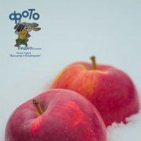 Яблоки на снегу :: Руслан Васьков