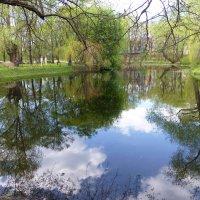 Старинный пруд в Аптекарском огороде :: Лидия Бусурина