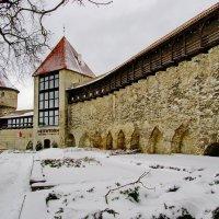 Девичья башня в саду Датского короля :: Андрей K.