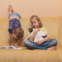 Таня с котом, Федя за книгой, я с камерой. При делах. :: Елена Ахромеева