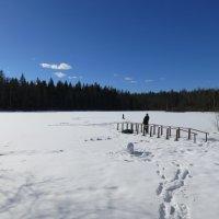 Солнечный денёк на озере. :: Валентина Жукова