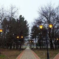 Вечер в в парке. :: Мила Бовкун